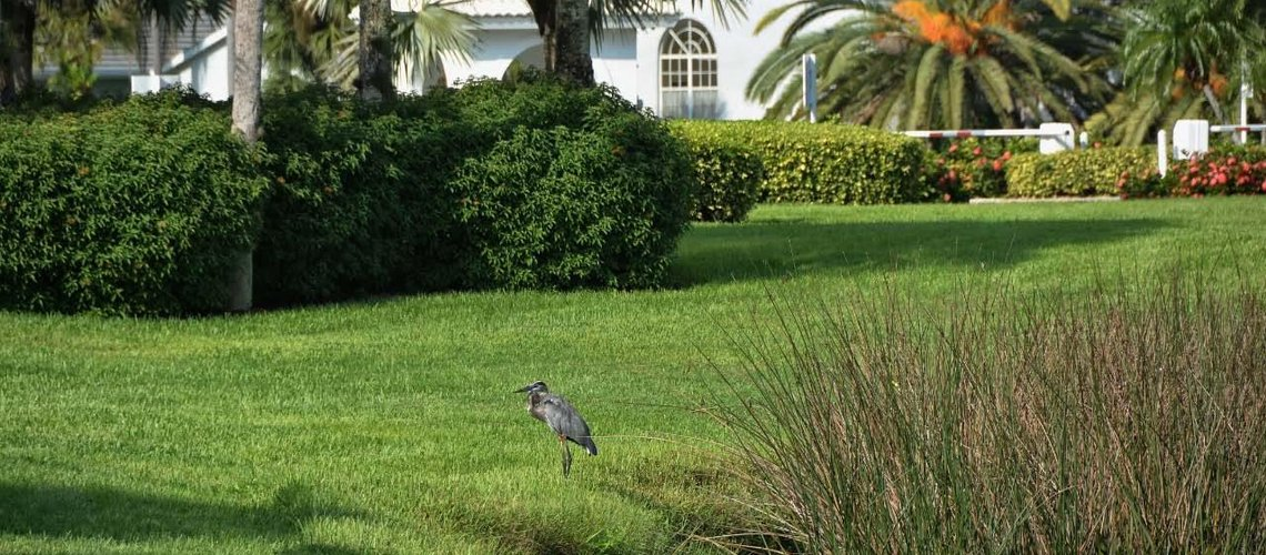 Gulf Shores Realty: 516007774