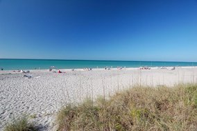 Gulf Shores Realty: 1597037767