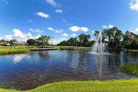 Gulf Shores Realty: 1602162577