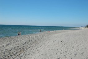 Gulf Shores Realty: 1795920260