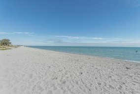 Gulf Shores Realty: 1892439719
