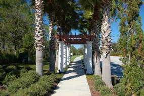 Gulf Shores Realty: 283771271
