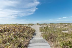 Gulf Shores Realty: 339471415