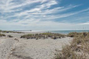 Gulf Shores Realty: 563828322
