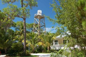 Gulf Shores Realty: 7318352