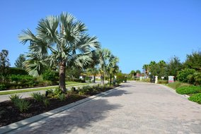 Gulf Shores Realty: 780504184