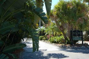 Gulf Shores Realty: 861196934