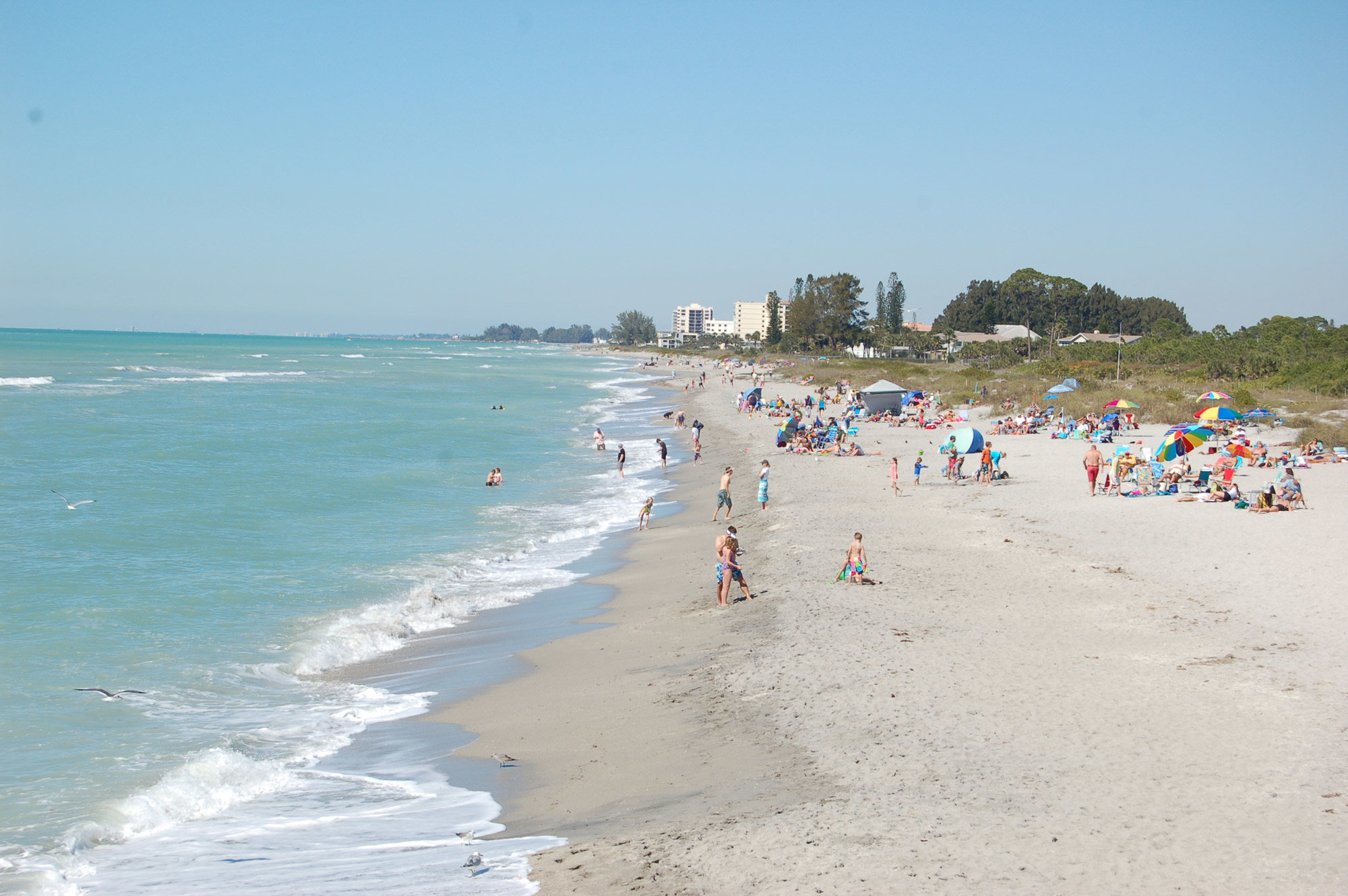 Venice florida named best places to retire in 2014 for Top beach towns in florida